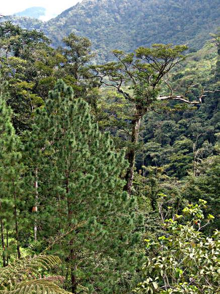 Cerro Azul Meambar National Park by World1Tours